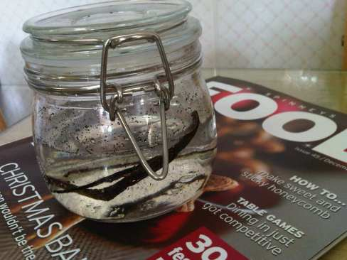 Vanilla Extract - Day One